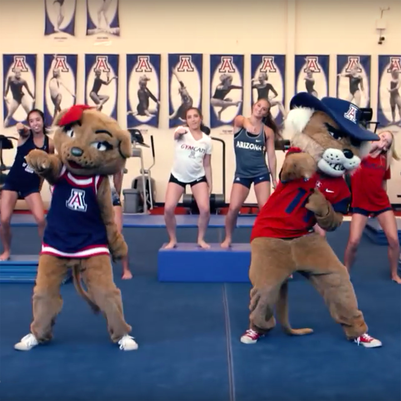 "Arizona Wildcats gymnastics team hops aboard ""Watch Me (Whip/Nae Nae)"" bandwagon"