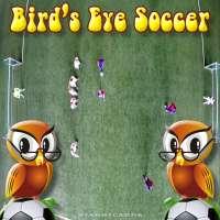 Bird's-eye view football aka bird's-eye view soccer