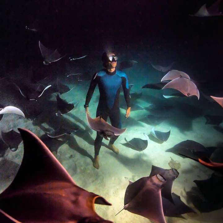 Guillaume Néry hanging with rays on the ocean floor