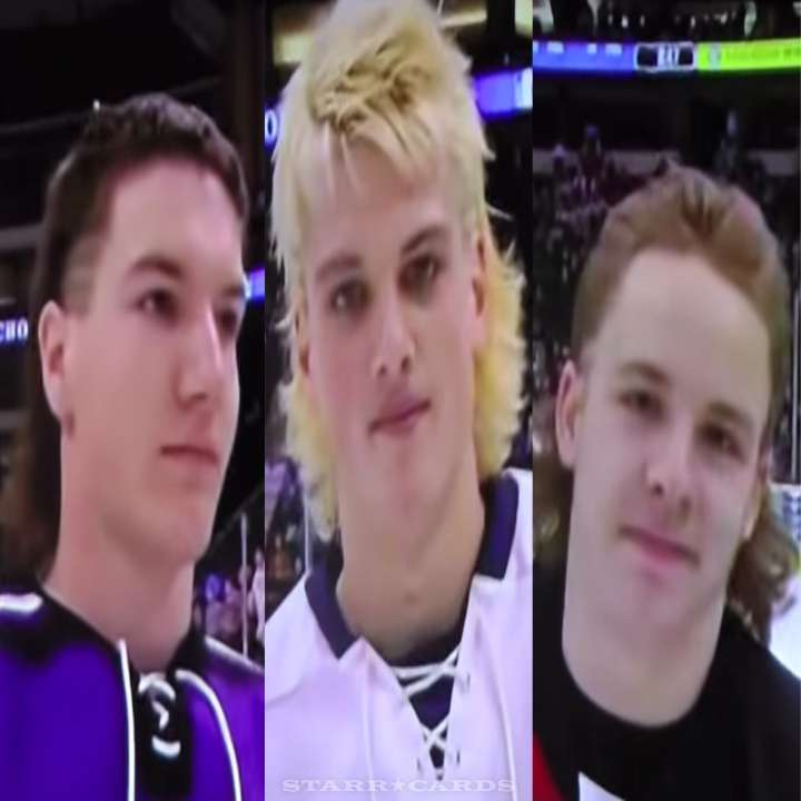 Mullets of the 2015 Minnesota State High School All Hockey Hair Team
