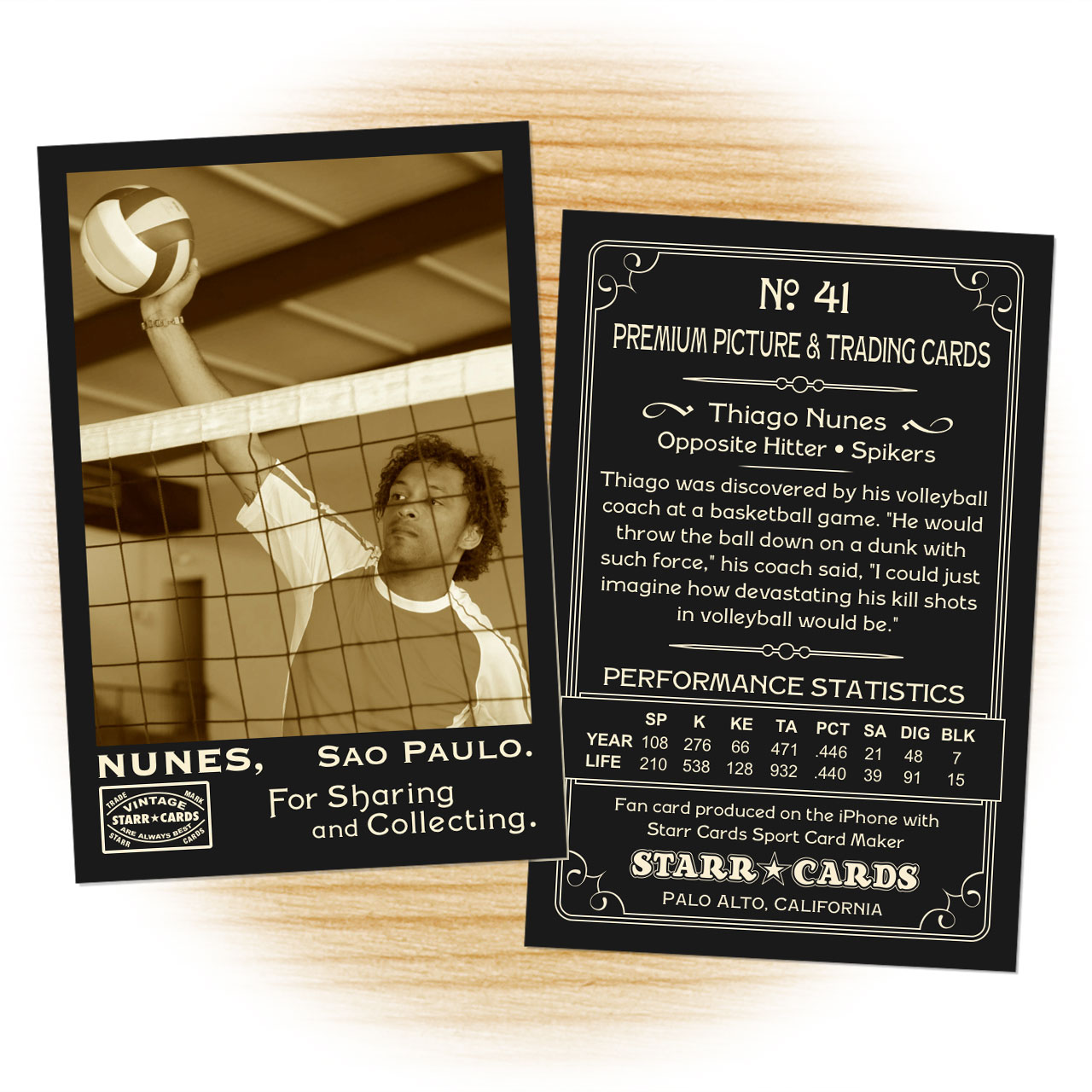 Vintage 95 Series custom volleyball cards