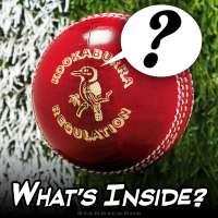 What's inside a Kookaburra regulation cricket ball?